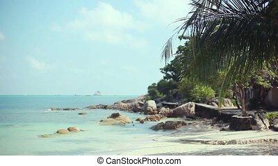 Tropical beach with coconut palm tree and white sand on Koh Samui coastline. 1920x1080