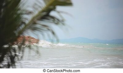Tropical beach with heavy waving palm trees in a storm in...