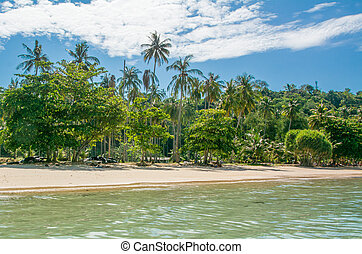 Tropical beach with palm trees under clear blue sky