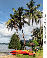Tropical beach with palms, Chang island, Thailand