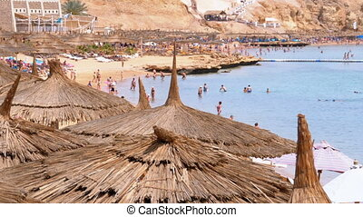 Tropical Beach with Sun Umbrellas on Red Sea near Coral Reef. Egypt.