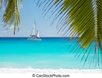 Tropical beach with yacht and palm leaves. Anse Georgette,...