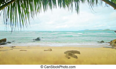 Tropical beach without people
