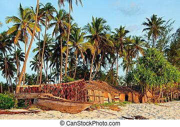 Tropical beach - Zanzibar