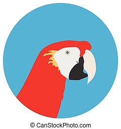 Tropical bird parrot