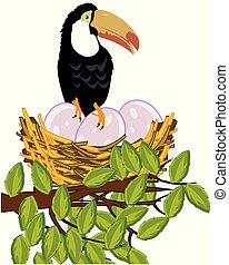 Tropical bird toucan on jack with egg