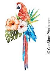 Tropical birds - Beautiful vector set with nice watercolor...