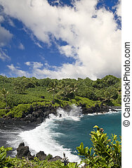 Tropical Black Sand Beach