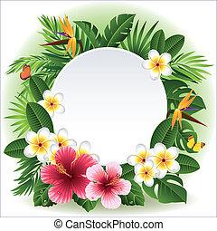 tropical blomstrar