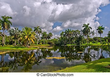 Tropical botanic garden - Fairchild tropical botanic garden,...