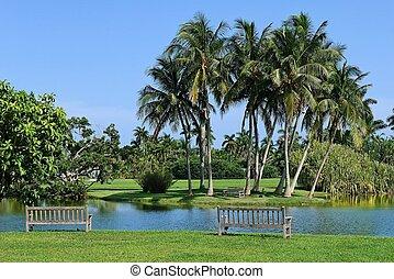 Tropical botanic garden