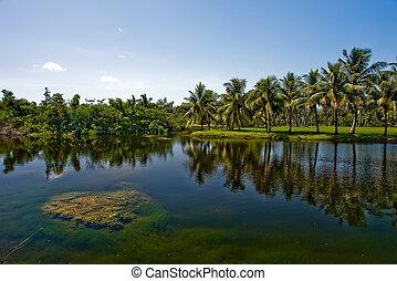 Tropical botanic garden - Fairchild tropical botanic garden,...