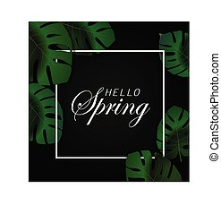 Tropical bright green monstera leaves, frame background