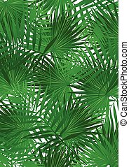 Tropical Cabbage palm on white background