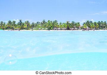 Tropical Caribbean paradise