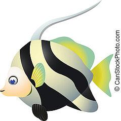 tropical, caricatura, pez