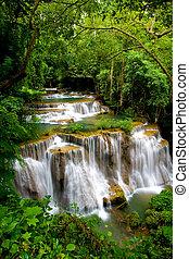 tropical, cascada, magnífico