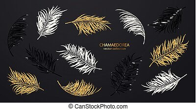 Tropical chamaedorea leaves. Set of black, white and golden shiny plants isolated on black background. Vector collection