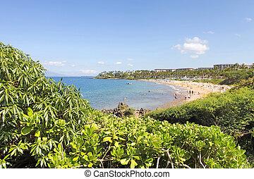 Tropical coast with ocean and island view over the greenery. Maui. Hawaii. Polo and Palauea Beach.