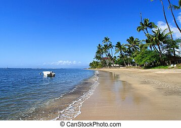 Tropical coastline - coastlin of Lahaina,Maui,Hawaii