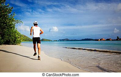 tropical, corriente, playa, hombre