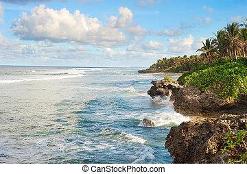 tropical, costa