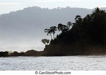 tropical costa rica - Silhouette of costa rican rainforest...
