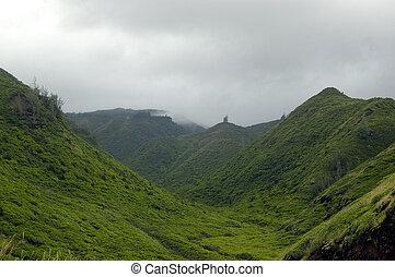 Tropical countryside II