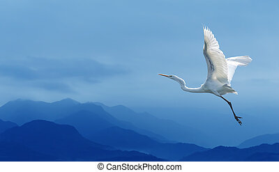 Tropical crane over blue sky