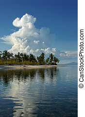 Tropical pristine white sand beach with palm trees and giant cumulonimbus cloud towering over the exotic landscape. Concept of weather and meteorology.