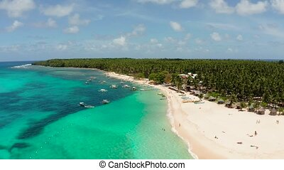 Tropical landscape: Daco island with beautiful beach, palm trees by turquoise water view from above. Siargao, Philippines. Summer and travel vacation concept