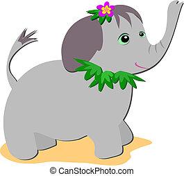 tropical, elefante bebé