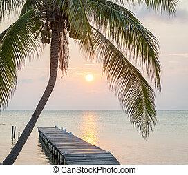 tropical, embarcadero, salida del sol