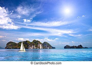 tropical, escénico, océano, indio, isla