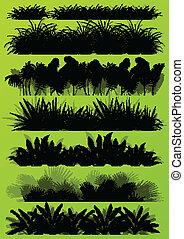 tropical, exótico, selva, pasto o césped, y, plantas, detallado, siluetas, paisaje, ilustración, colección, plano de fondo, vector