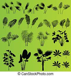 tropical, exótico, selva, pasto o césped, y, plantas, plano de fondo, vector