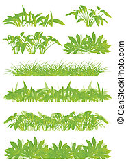 Tropical exotic jungle grass and plants detailed silhouettes landscape illustration collection background vector green concept