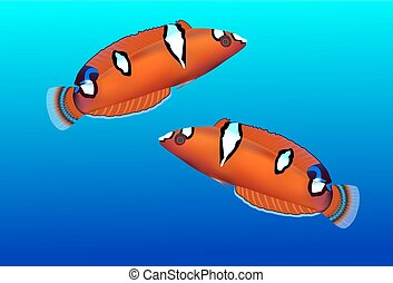 Tropical fish isolated, vector illustration