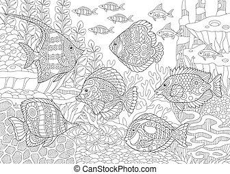 tropical, fishes., colorido, página