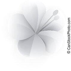 Tropical Flower Paper Composition
