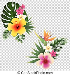 Tropical Flower Set Vector Illustration With Gradient Mesh