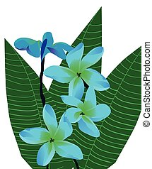 Tropical Flowers - vector topical flowers