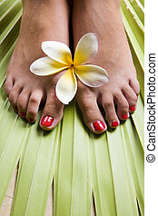 Tropical Footspa