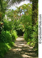 Flower Forest, Barbados.