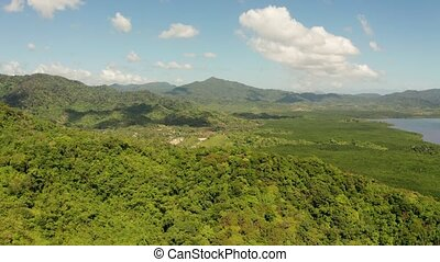 Tropical forest and mountains, Palawan, Philippines - Aerial...