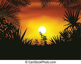 Tropical forest silhouette