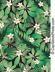 tropical, frangipani