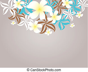 tropical, frangipani, flores, (plumeria)
