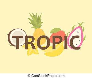 Tropical Fruit Design for T-Shirt