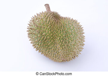 tropical fruit durian with white background